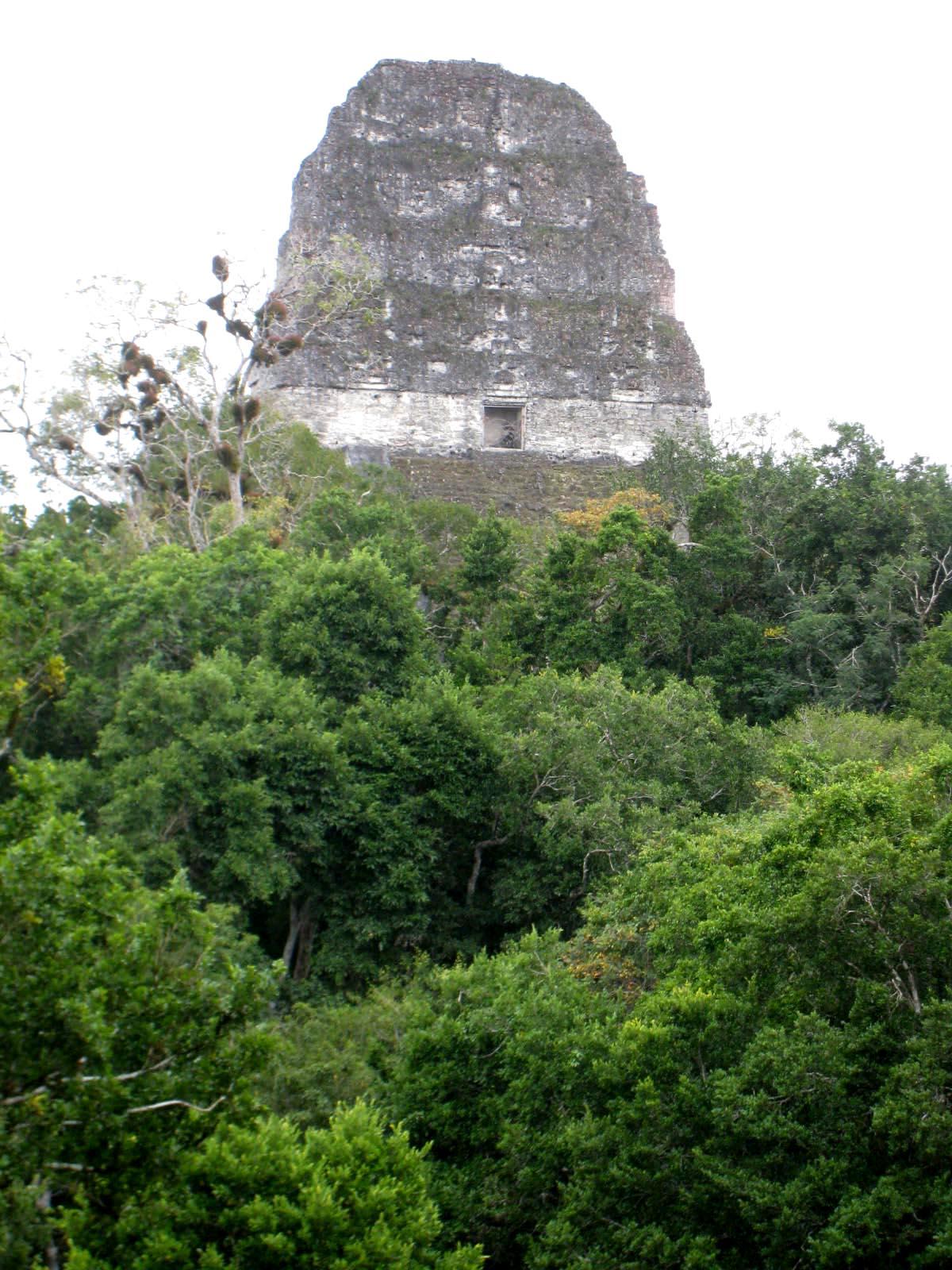 Tikal Temple IV - Guatemala